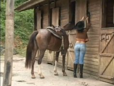 Brunette cowgirl Alison is eager for wild sex in the barn